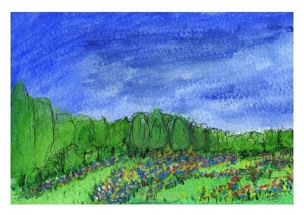 Luscious Fields Print